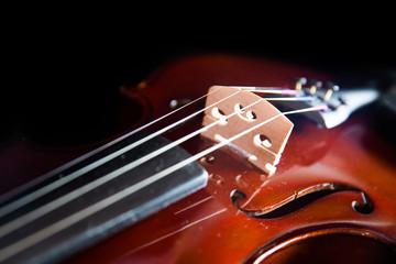 Violin on a black background