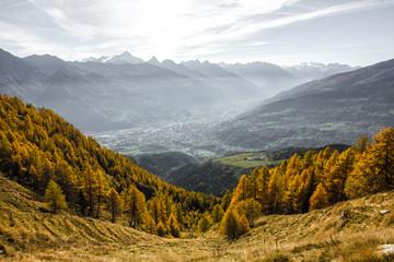 Paesaggio autunnale in montagna con alberi