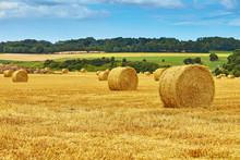 "Постер, картина, фотообои ""Golden hay bales in countryside"""