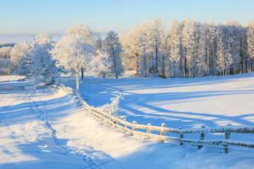 Countryside winter landscape
