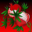 Ripe pomegranate illustration colorful background red and green