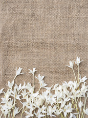 White flower on fabric background