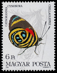 Stamp printed in Hungary shows a butterfly