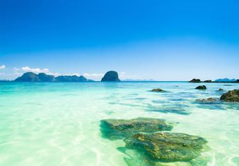 Natural Luxury Marine Scene