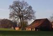 canvas print picture - Bauernhof im Herbst