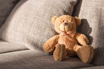 Teddy auf dem Sofa