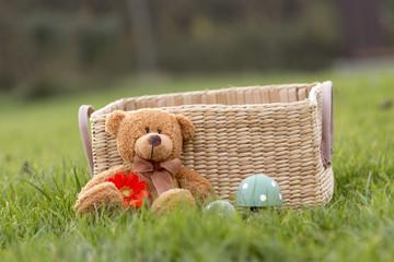 Teddy mit Blümchen im Gras
