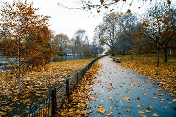 St. James's Park, Londra