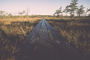 wooden footpath on the bog. Vintage.