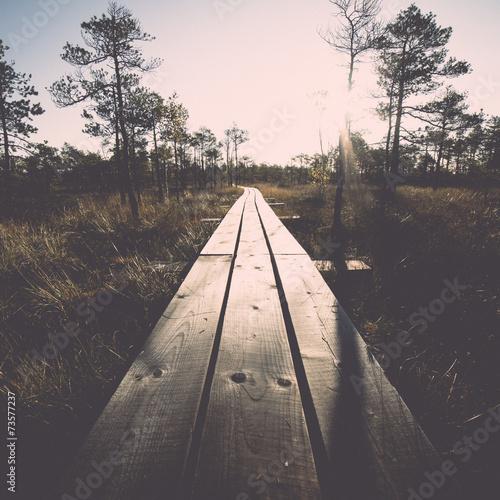 wooden footpath on the bog. Vintage. - 73577237
