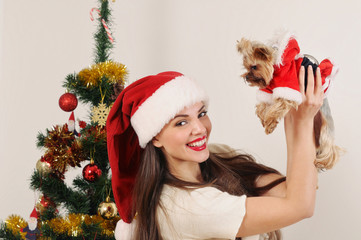 happy woman in Santa hat with toy terrier on Christmas tree back