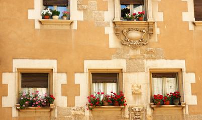 Fachada de ventanas con macetas, Girona
