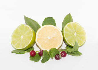 lime, lemon,  cranberries and mint isolated
