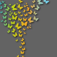 Valentine's Heart of butterflies vector background