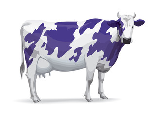 Cow in Milka style