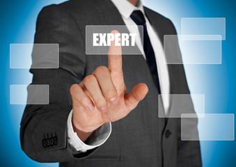 Businessman touching a expert button