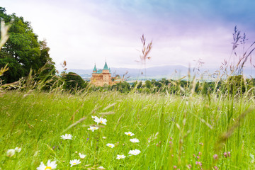 Field and castle
