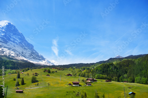 Countryside view near Alps mountains in summer