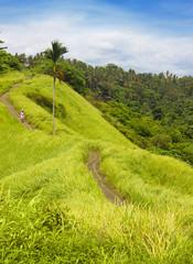 beautiful landscape of tropical island