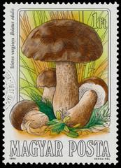 Stamp printed in Hungary, shows edible mushrooms