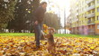 Young female playing with beagle puppy dog in autumnal park