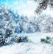 Leinwanddruck Bild - winter