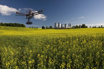 Canola aerial patrol