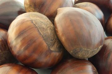 background of chestnut