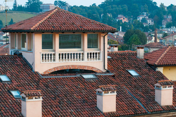 Rooftops in Vicenza