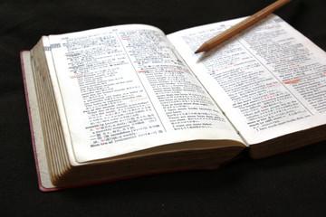 辞書と鉛筆 No.2