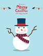 Zdjęcia na płótnie, fototapety, obrazy : Snowman (Christmas Characters)
