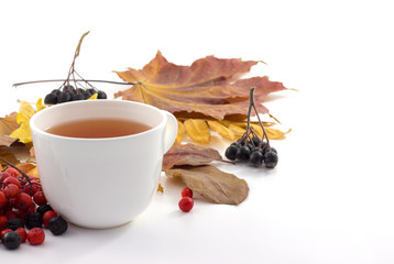 White mug of tea on a white background with autumn leaves