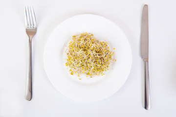 sprouts on a plate
