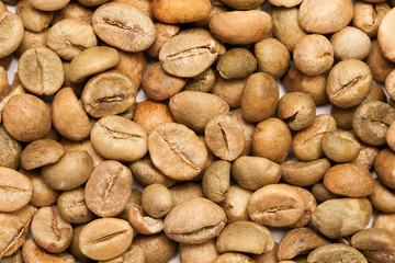 Dry green coffee beans (Coffea arabica)