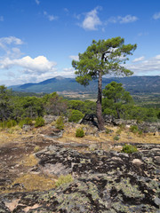 Sierra de Gredos desde la Peña Muñana