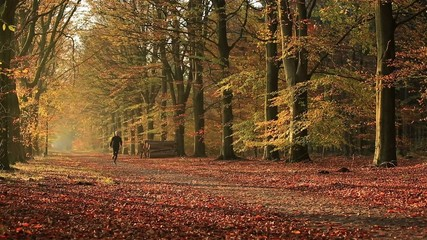 Man running in an autumn colored lane in the forest.