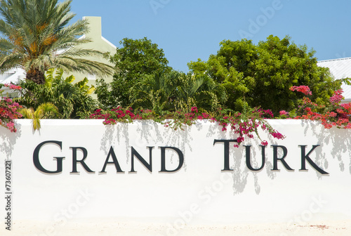 Fotobehang Palm boom Grand Turk