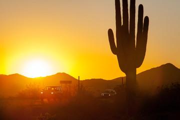Sonnenuntergang im Saguaro Nationalpark Arizona