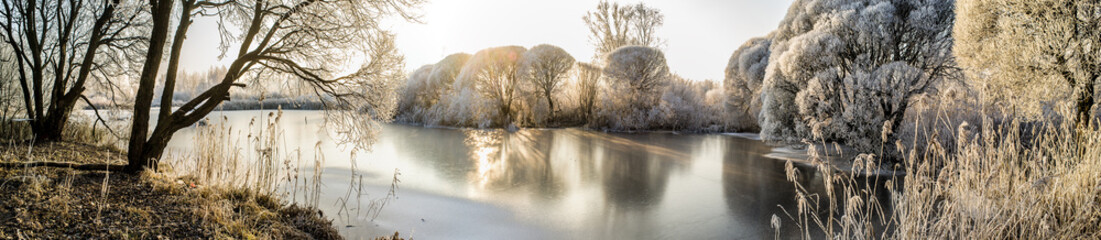 Panorama of the frozen lake and snow-covered trees © koldunova
