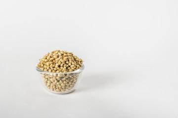 Dry coriander seeds