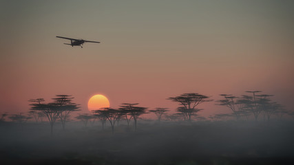 Airplane flying over misty savannah landscape at dawn. Low persp