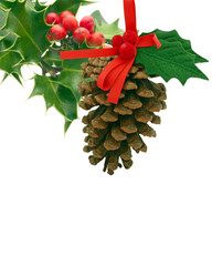 Holly and pine cone