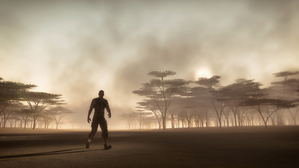 Male adventurer walking in misty savannah landscape at sunrise.