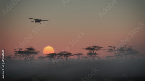 Airplane flying over misty savannah landscape at dawn. Low persp - 73609068