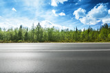Fototapety asphalt road and forest