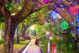 City park. Hanoi