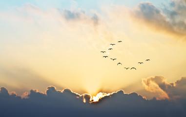 el sol se asoma entre las nubes