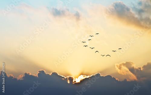 Aluminium Zonsondergang el sol se asoma entre las nubes