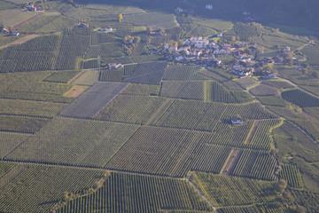 Apfelplantage im Vinschgau
