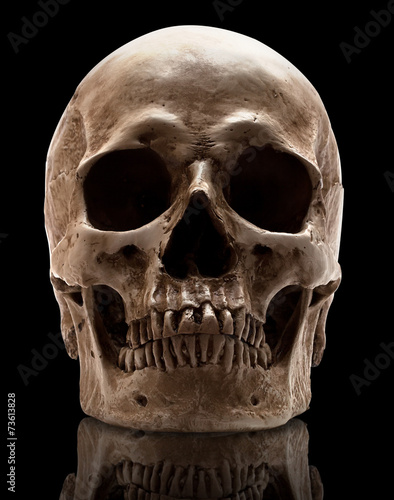 canvas print picture skull-close mouth